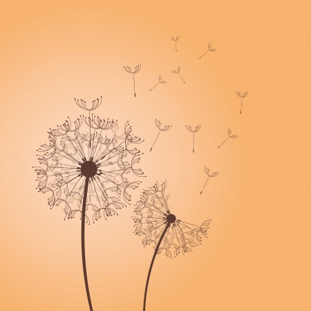 dandelion seed: The vector dandelion on a wind loses the integrity