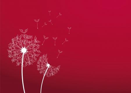 blowing wind: Dandelions background