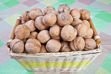 disintegrating: Walnuts on the table in an inverted wicker basket