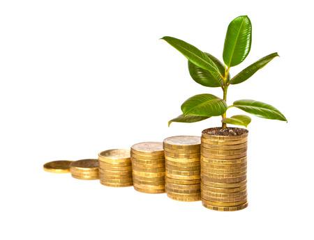 Money growth Archivio Fotografico