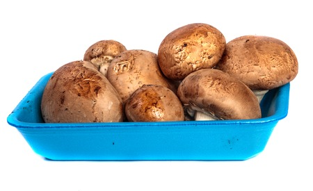 Royal large champignon in a blue plastic container. on a white Stock Photo