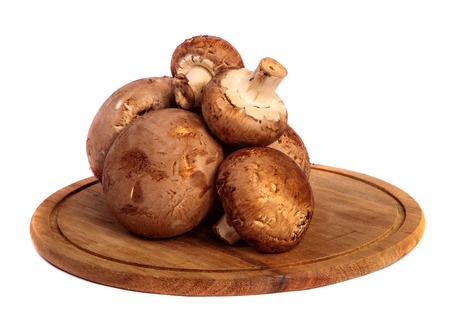 royal large champignon on a wooden chopping round board. on a white 免版税图像
