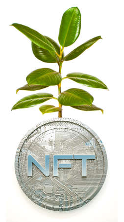 sprout of ficus from a three-dimensional coin with the inscription nft on a white background. collage from photography and 3d render Imagens