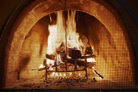 log fire: Una stufa a legna che brucia dietro una copertura di protezione.