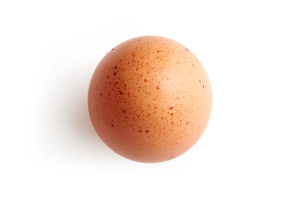 speckles: A fresh hens egg with speckles on a white background