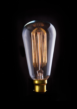 switched: A classic Edison light bulb with a squirrel cage filament. Switched On.