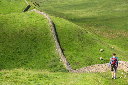 A hiker walking alongside Hadrians Wall Walk in Northumberland, North East of England, UK.