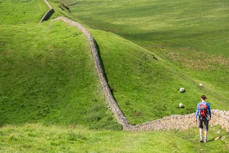 stone wall: A hiker walking alongside Hadrians Wall Walk in Northumberland, North East of England, UK.