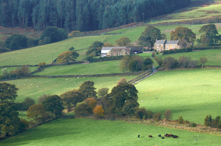 moors: A farm in the rolling hills of North York Moors, North East England. UK.