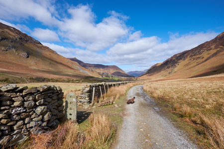 Looking along Newlands Beck, Derwent Fells in the English Lake District, UK.