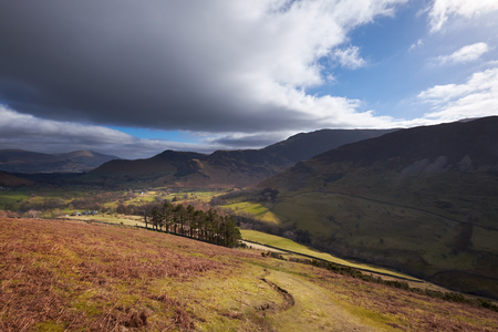 newlands: Looking down towards Newlands Beck from High Snab Bank in the English Lake District, UK. Stock Photo