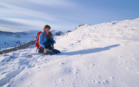 freshly fallen snow: Hiker checking their dogs paws while walking in freshly fallen snow. Hartsop Above How in the Lake District.