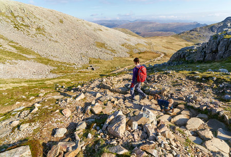 end of the trail: A hiker walking down towards Esk Hause, Grains Gill from Scafell Pike in the English Lake District. UK. Stock Photo