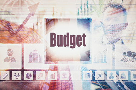 stock predictions: Business Budget concept button on a coloured background Stock Photo