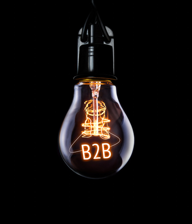 organise: Hanging lightbulb with glowing B2B concept.