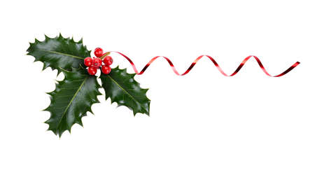 A sprig, three leaves, of green holly and red berries and red ribbon for Christmas decoration isolated against a white background.