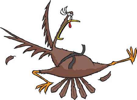 Cartoon Turkey training to stay off Dinner table  Vector and high resolution jpeg files available  Illustration