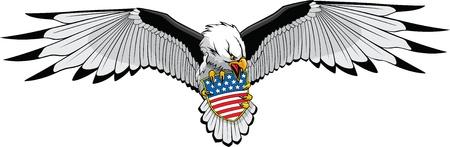 aguila americana: Ilustrado Eagle en Hi y formatos raster resolución Vectores