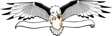 Illustrated Eagle with banner  Put what you want on banner   art and Hi res raster files available