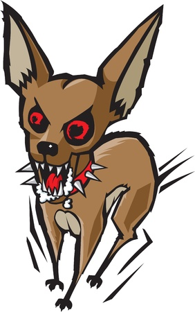 cartoon chihuahua: A cartoon Chihuahua  He is loco and quite hyper   and high resolution raster files available  Illustration
