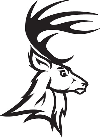 Illustrated Deer Bust Profile  Black and White  and high resolution jpeg files available Stock fotó - 26867821