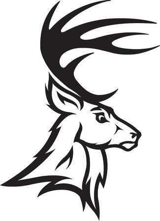 venado cola blanca: Ilustrado Deer Busto Perfil archivos jpeg de alta resolución disponibles Negro y Blanco y