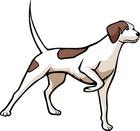 An illustrated hunting dog