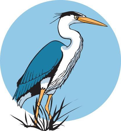 Eine illustrierte Heron und die hohe Auflösung von Rasterdateien verfügbar