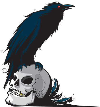 頭蓋骨の上に腰掛けてレイヴンのイラスト。階層化されたベクトルと利用可能な高解像度の jpeg ファイル。