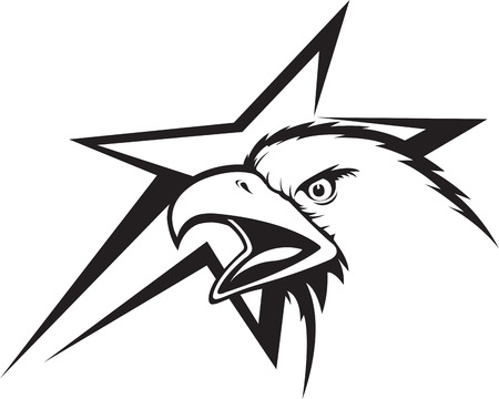 Illustration of an Eagle Head and abstract star Illustration