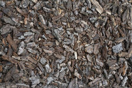 Small pieces of bark on a forest road to run on barefoot