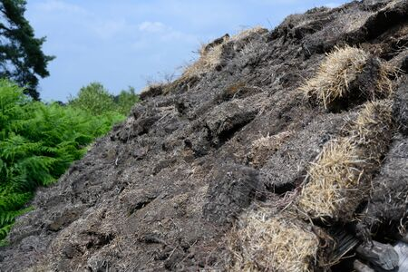 Dry peat on a roof in Holland