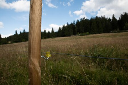 Wire on a pasture in the Black Forest in Bernau