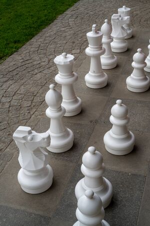 Plastic chess pieces outside next to a green meadow