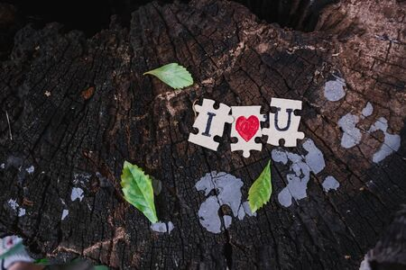 A picture of a paper jigsaw put on a tree stump and write that I love you