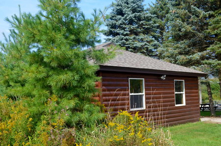 Beautiful park log cabin in the woods in summer