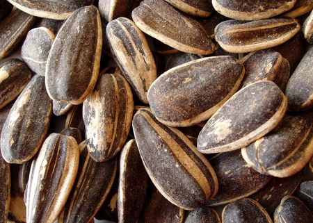 seasoned: seasoned sunflower seeds (dill pickle flavor) Stock Photo