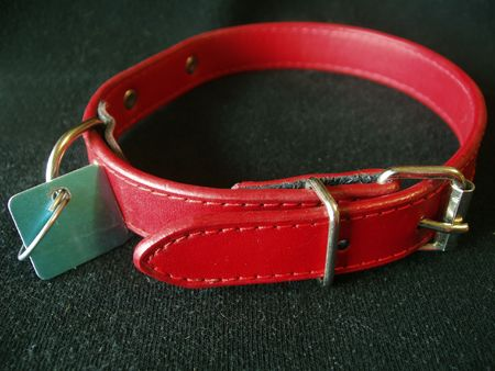 behave: dog collar with tag on black background Stock Photo