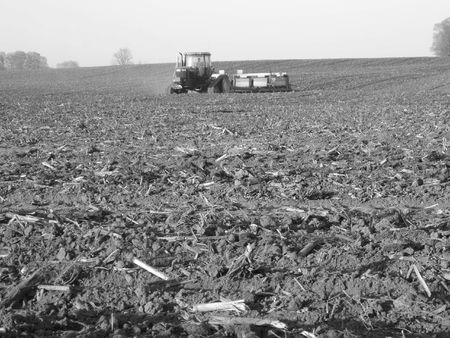 manure: tractor speading manure on fields - Southwestern Ontario