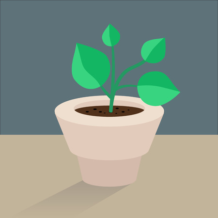 germinating: Vector flat icon plant pot Illustration