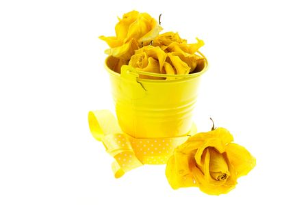 dry yellow roses and bucket with ribbon on a white background photo