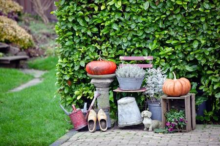 garden thanksgiving and halloween decoration. horizontal shot