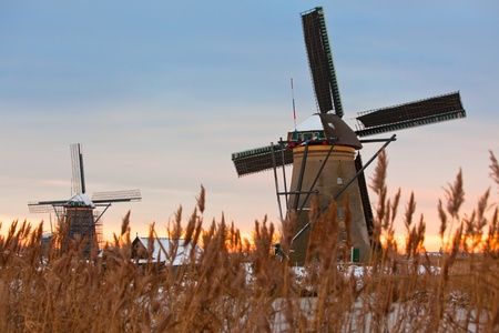 Kinderdijk landscape with Windmills in Winter. Horizontal shot Stock Photo - 8302970