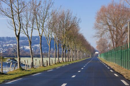 Country Road surrounded by trees and fence. horizontal shot Stock Photo - 8351808