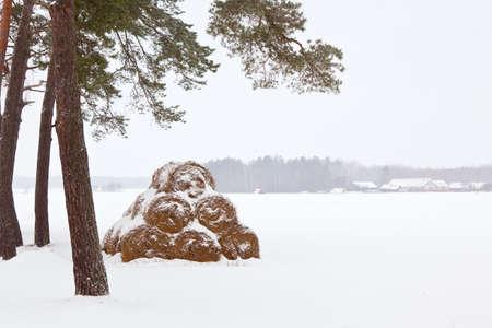 Winter Farm Landscape: haystacks in snow. horizontal shot Stock Photo - 8754347