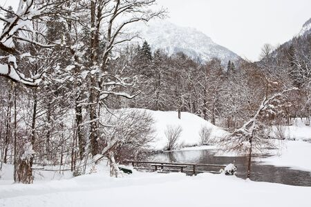 winter Alpine landscape with forest and lake. horizontal shot Stock Photo - 8754446