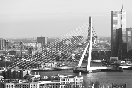 Erasmus bridge in Rotterdam. Grayscale horizontal shot