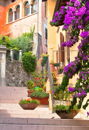traditional italian small town street with pots of flowers photo
