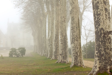 A country chalet on a foggy day at France.�Toned image photo