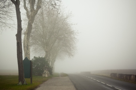 A country road on a foggy day at France. Toned and vignetted image Stock Photo - 10740379